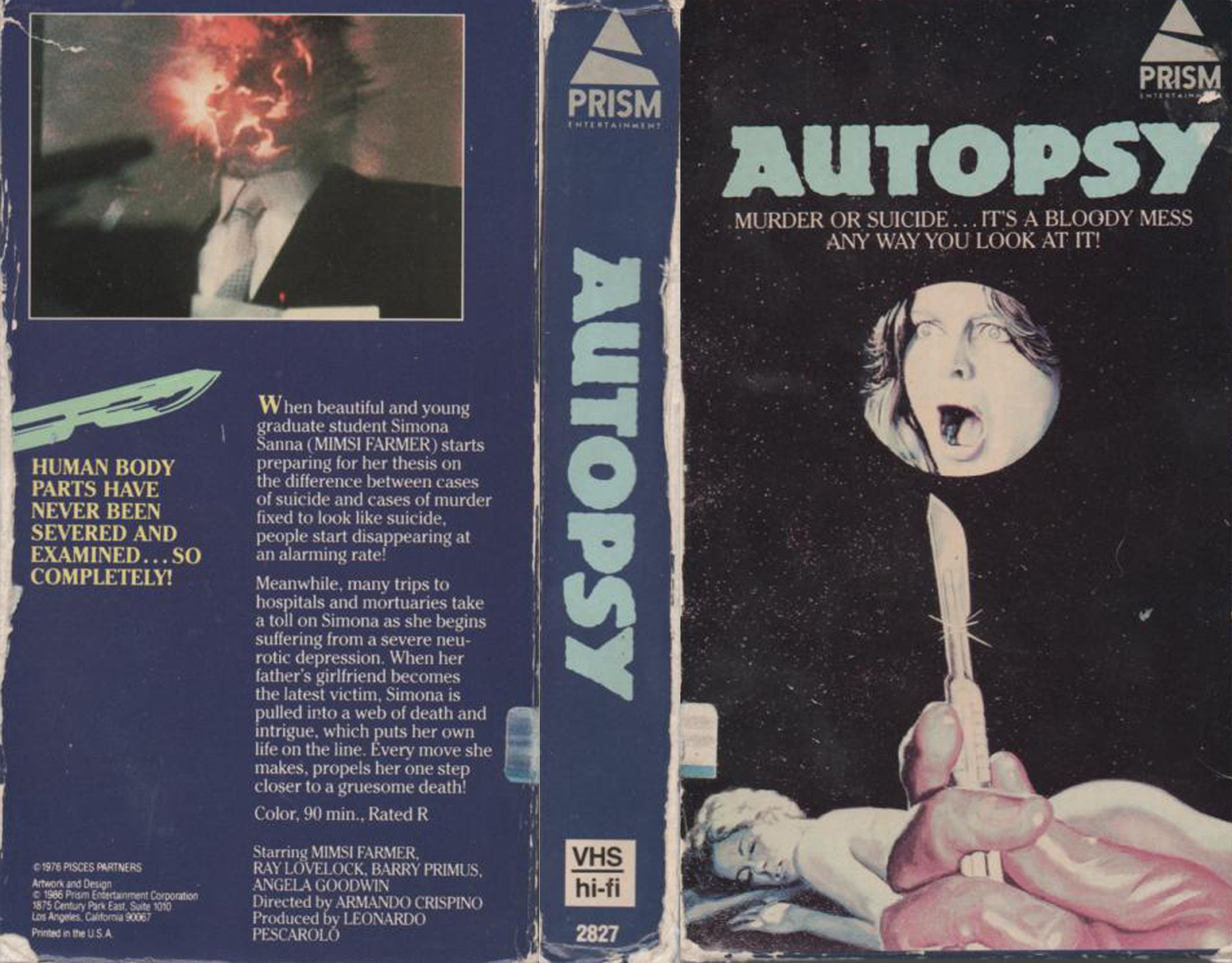VHS Cover Series: A Night At The Video Store: Part 2